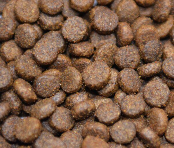 Łosoś z pstrągiem, batatami i szparagami dla psów małych ras